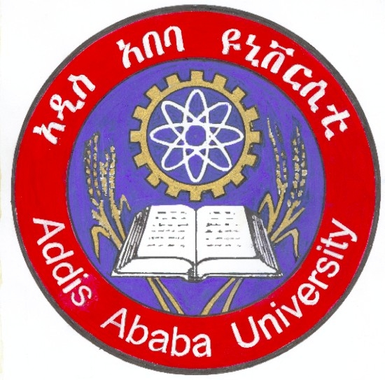 MSc  in Economics Addis Ababa University