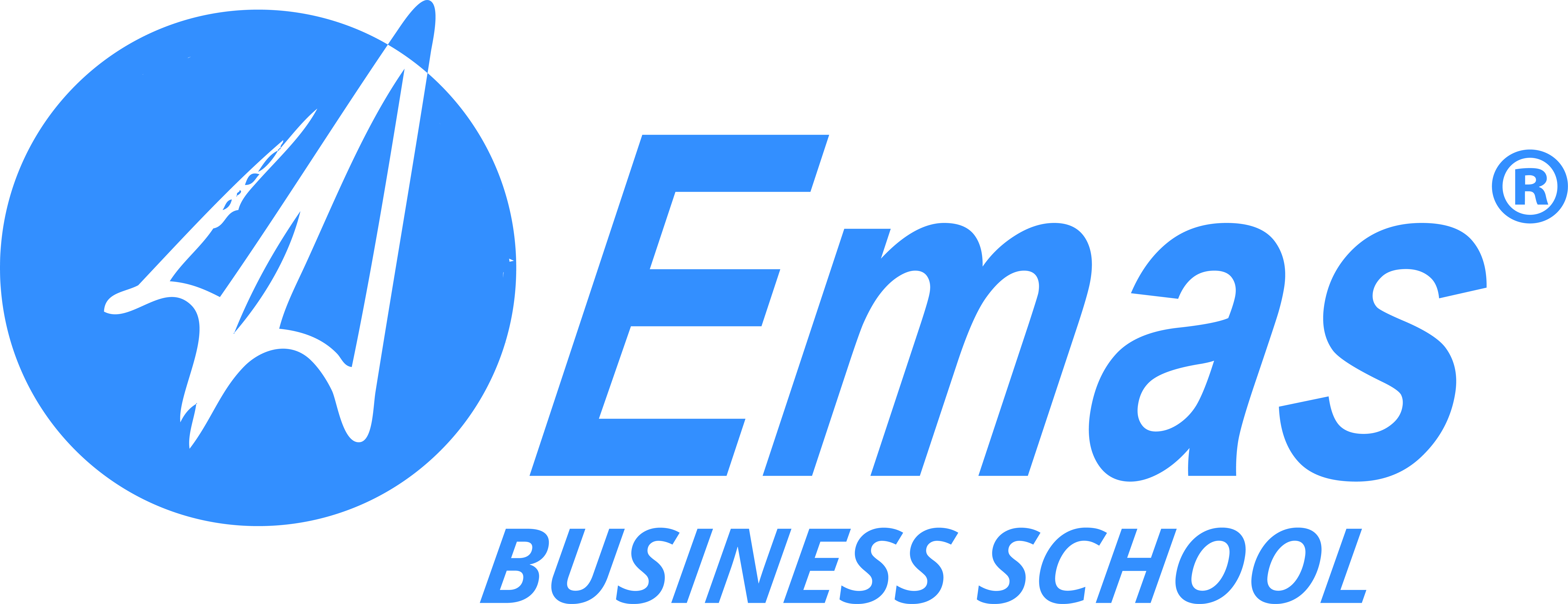 Logo of Eurasian Management and Administration School (EMAS Business Schools)