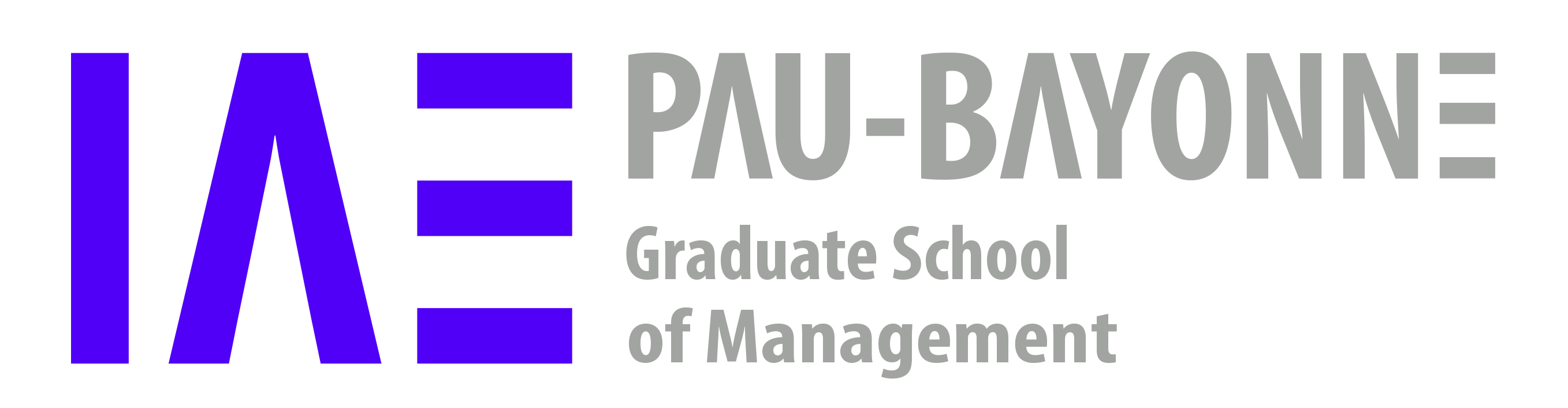 Logo IAE Pau-Bayonne, University School of Management
