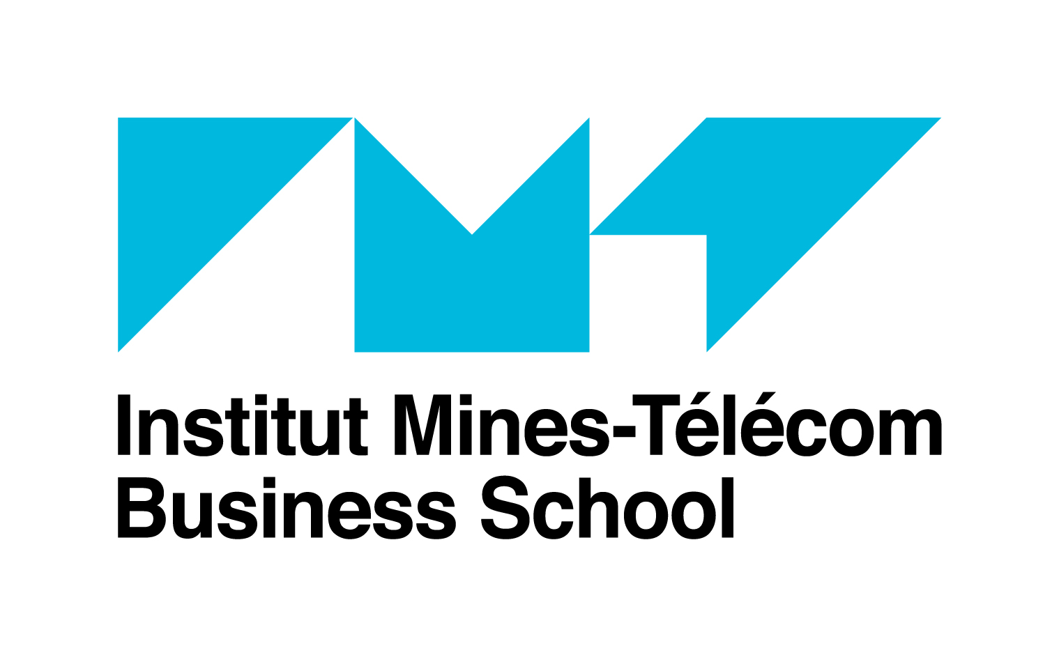 Logo Institut Mines-Telecom Business School