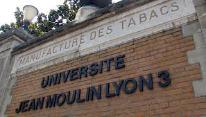 Logo Université Jean Moulin Lyon 3 - iaelyon School of Management